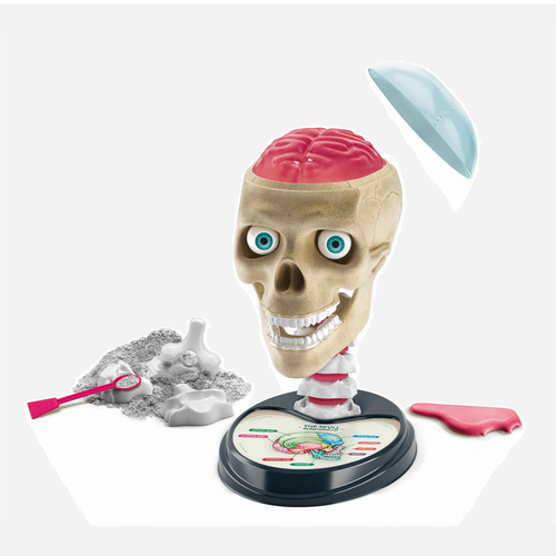 Clementoni Crazy Anatomy